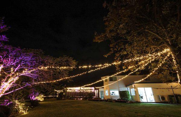 128-event-lighting-fairy-lights-festoon-queensland-decolight.com