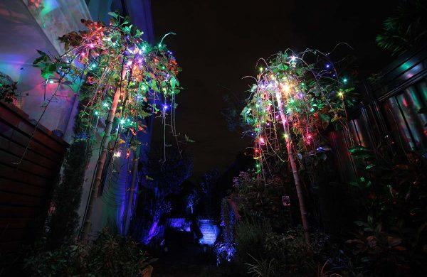 91-RGB-fairy-light-1