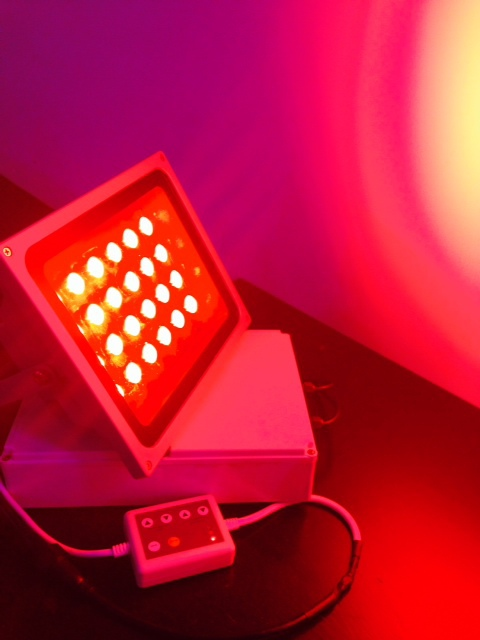 red flood light