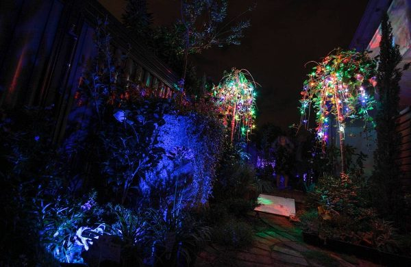 First-image-Landscape-Light-Installation---Inside-Out-Collective-(25)