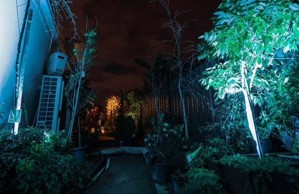 Landscape-Light-Installation---Inside-Out-Collective-(12)