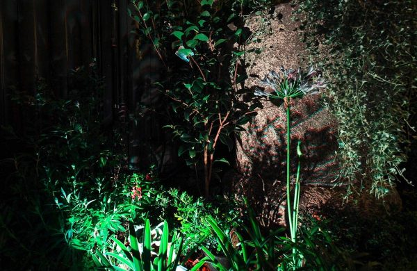 Landscape-Light-Installation---Inside-Out-Collective-(14)