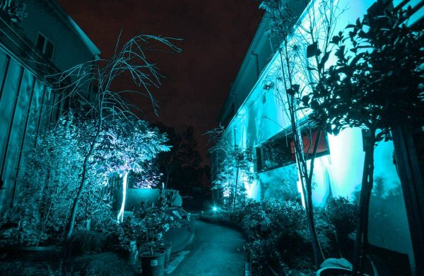 Landscape-Light-Installation---Inside-Out-Collective-(16)