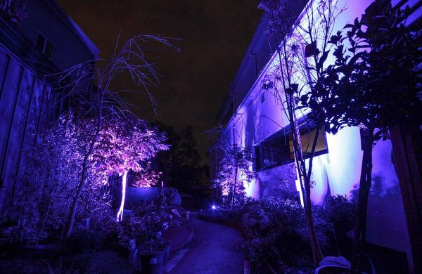 Landscape-Light-Installation---Inside-Out-Collective-(17)