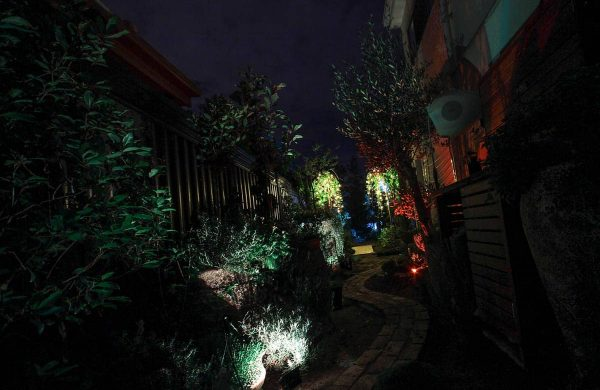 Landscape-Light-Installation---Inside-Out-Collective-(7)