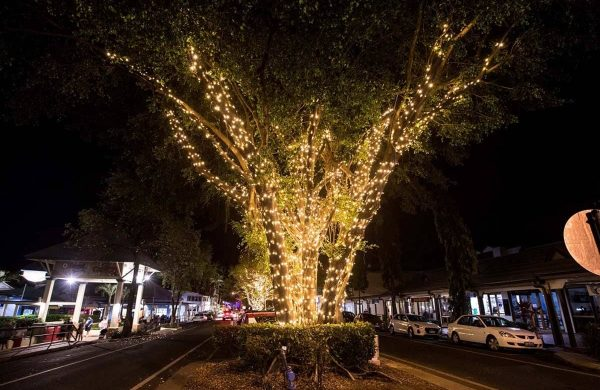Macrossa-Street-Lights-15