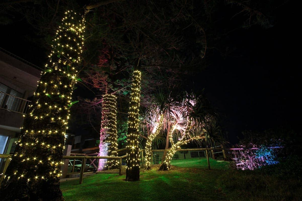 Pandanus-tree-24v-fairy-lighting-LED-wash-garden-lights-decorative-lighting-(2)