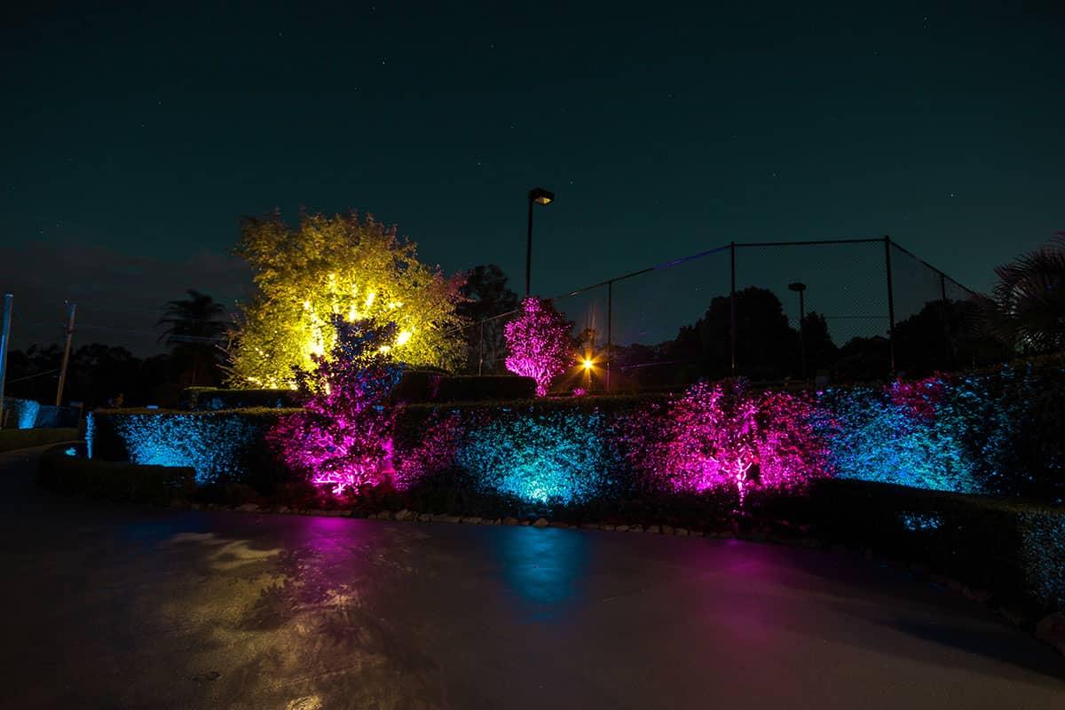 10 watt flood lights in a garden