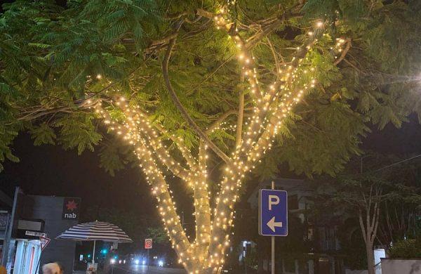 Tree-35-(1)