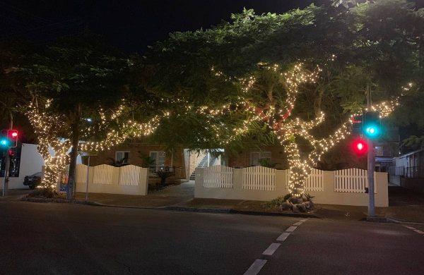 Tree-8-&-9