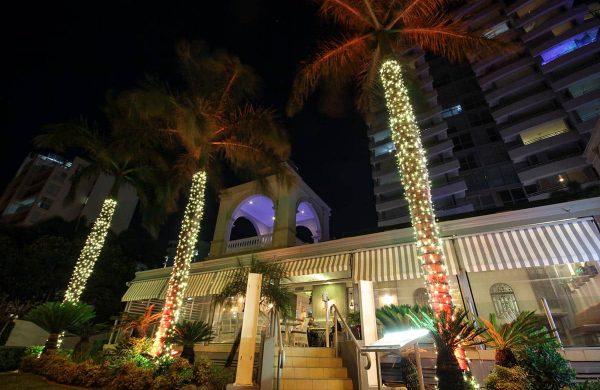 Wash-Light-&-Fairy-LIght-Palm---The-Grand-Hotel-(13)