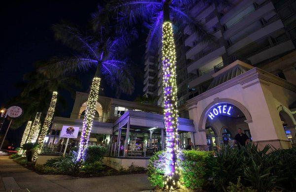 Wash-Light-&-Fairy-LIght-Palm---The-Grand-Hotel-(5)