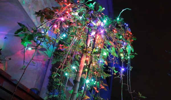 91-colour-changing-fairy-lights-2